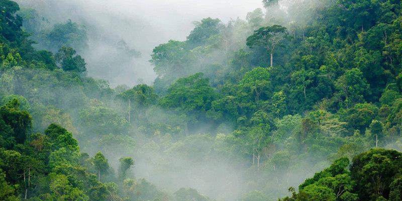 La Biosthetique Klimaneutral